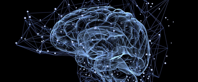 Cocaine brain waves