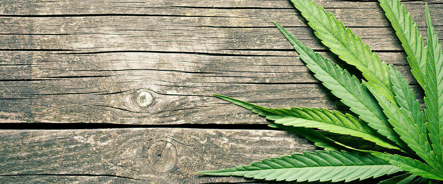 Study Gauges Impact of Heavy, Chronic Cannabis Use on Cognition and Psychosis-Related Phenomena