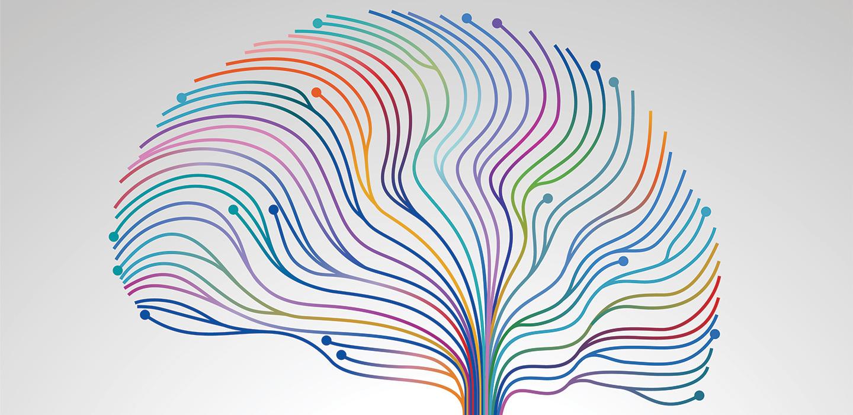 Creative concept of the brain