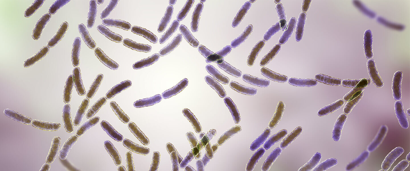 Gut Organisms Impact the Ability to Extinguish Fear
