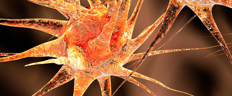 Creative image of brain neurons