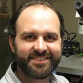 Thomas L. Kash, Ph.D. - brain & behavior research expert on anxiety