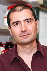 Bernardo Sabatini, M.D., Ph.D.