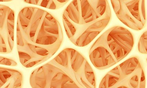 Abstract shape of bone structure