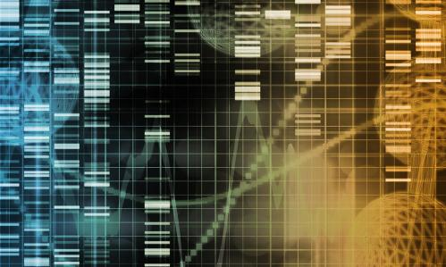 New Technique Recreates Large-Scale Genetic Errors