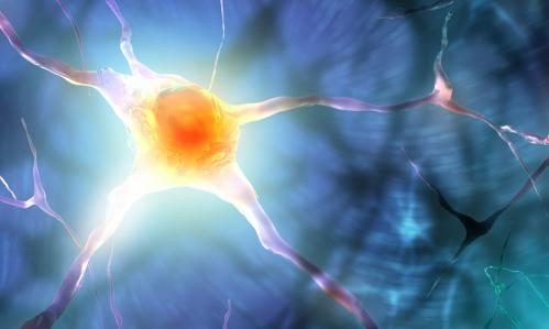 In Schizophrenia, Differences in the Brain's Energy Pathways Suggest Possible New Treatment Target