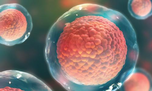 The Promise of Stem-Cell Biology: Treating People at High Risk for Psychiatric Illness Before They Become Patients
