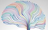 abnormally expressed genes brain