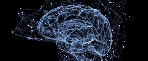 Potential Biomarker May Predict Which Depressed Patients Getting CBT Will Have Added Benefit from tDCS Brain Stimulation