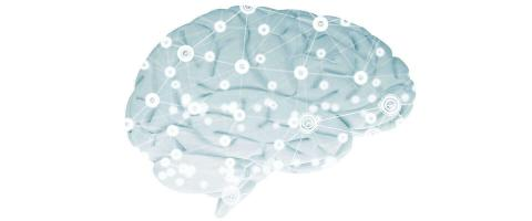 Brain-wave EEG Signature Robustly Predicted Antidepressant Response