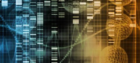 Genetic Anomalies
