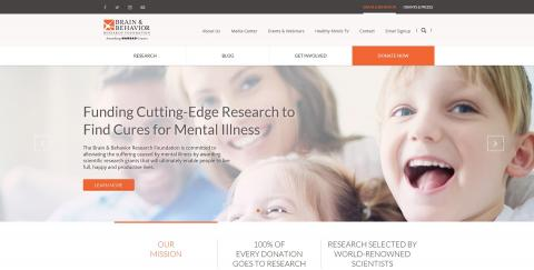 Redesigned our website bbrfoundation.org