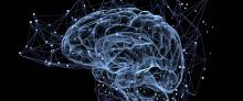 Progress is Reported on Research Exploring Use of Deep-Brain Stimulation for Psychosis, Schizophrenia