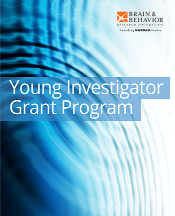 Young Investigator Grantees